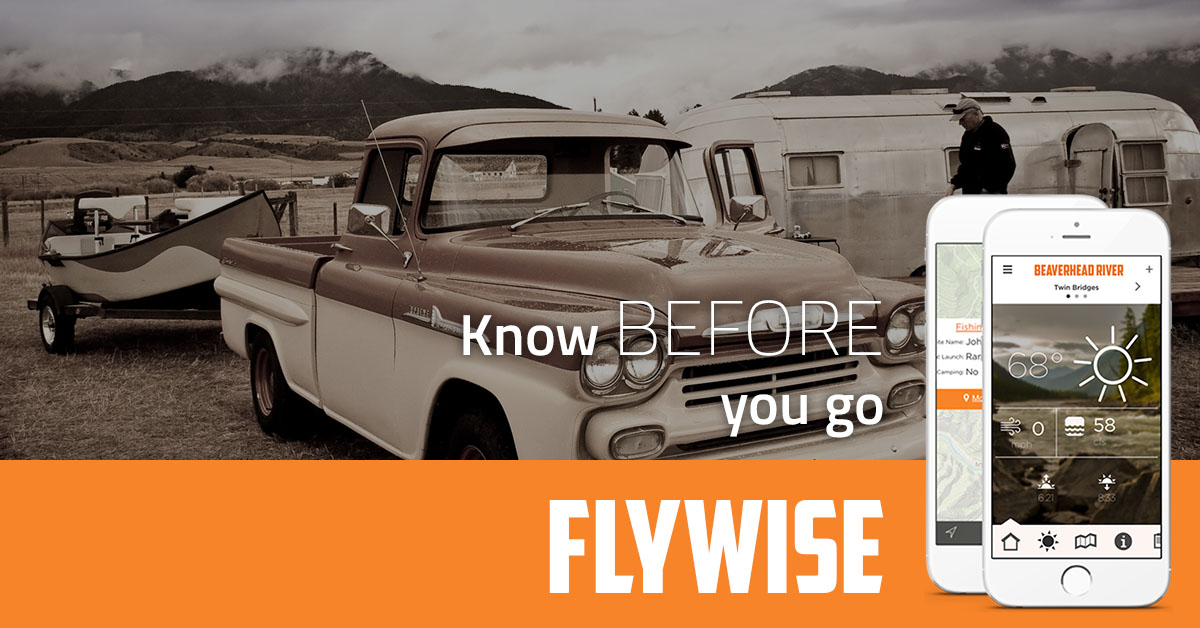Flywise Web Ad